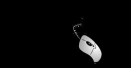 avoclic